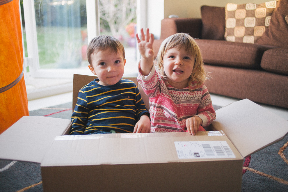 Toddler twins sitting in a box